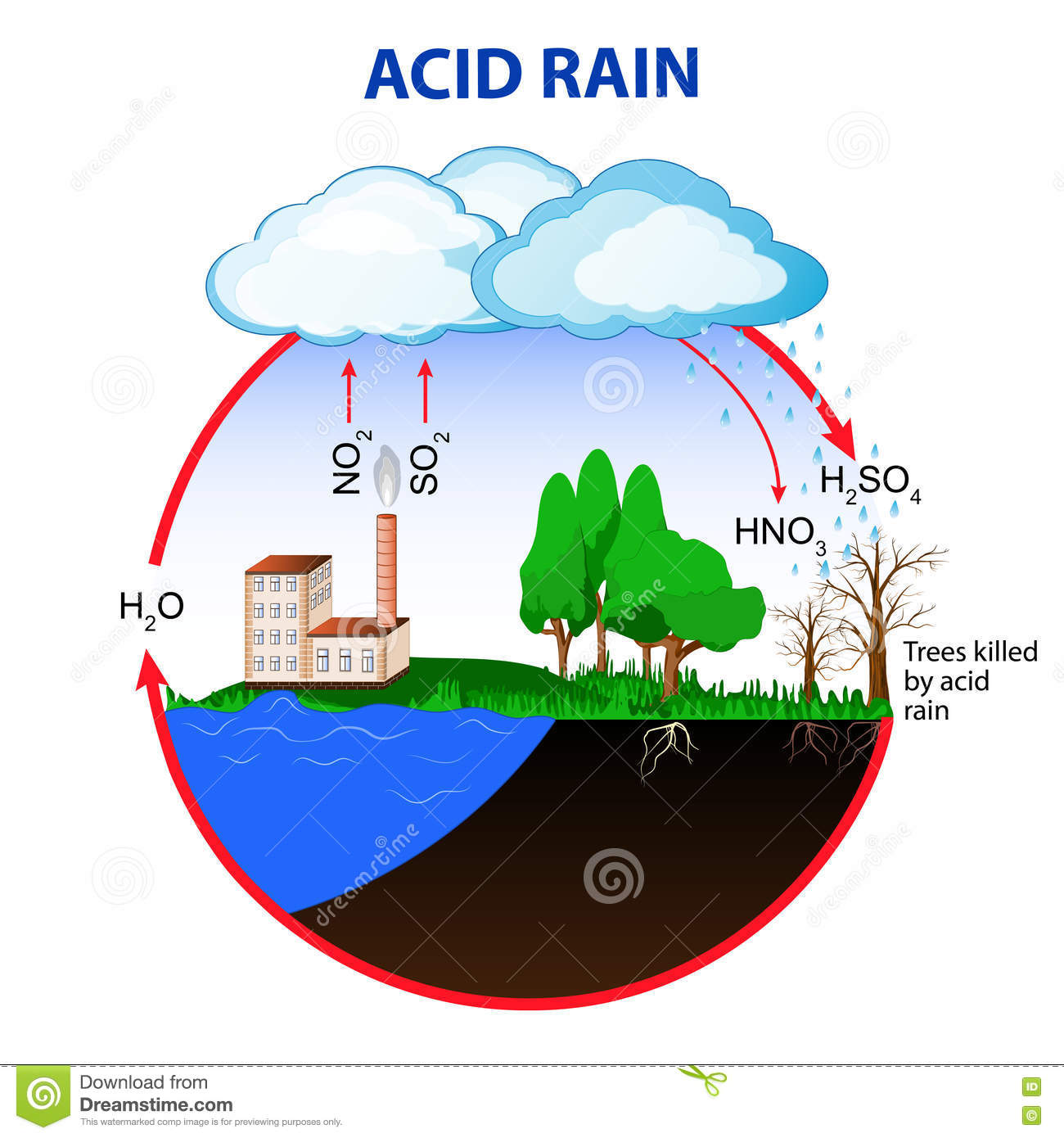 hight resolution of water acid rain diagram wire management wiring diagram water acid rain diagram