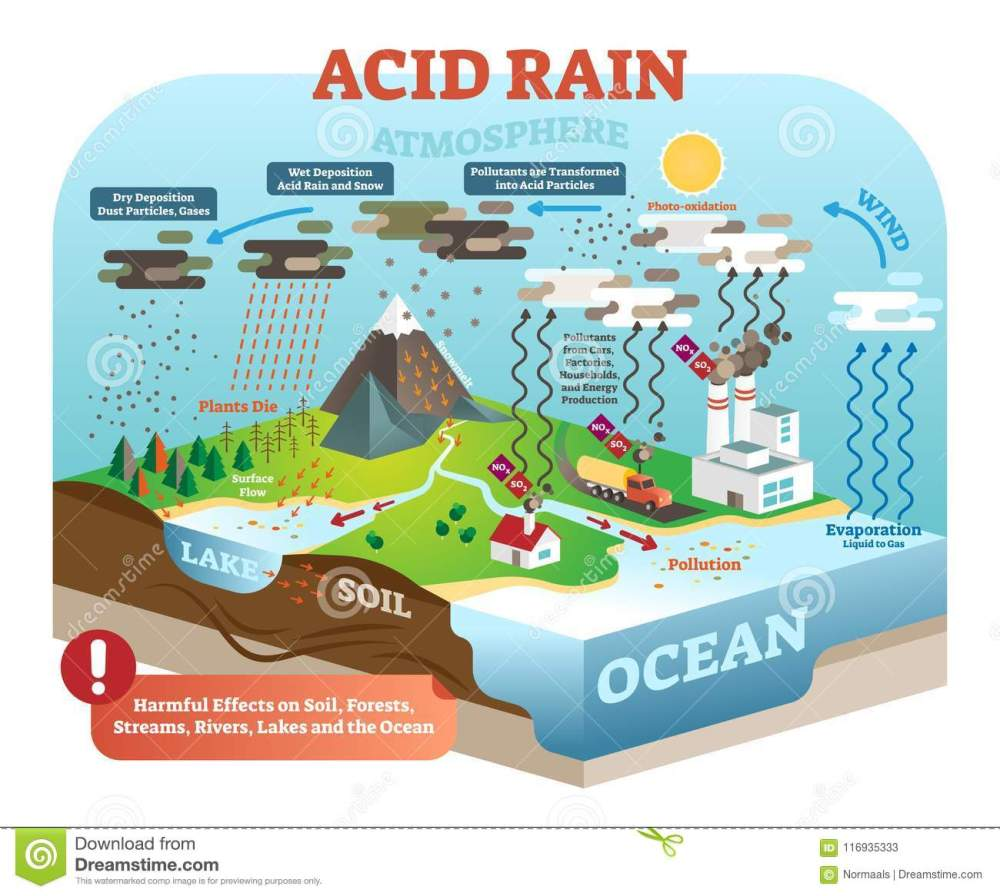 medium resolution of acid rain cycle in nature ecosystem isometric infographic scene diagram of acid rain cycle