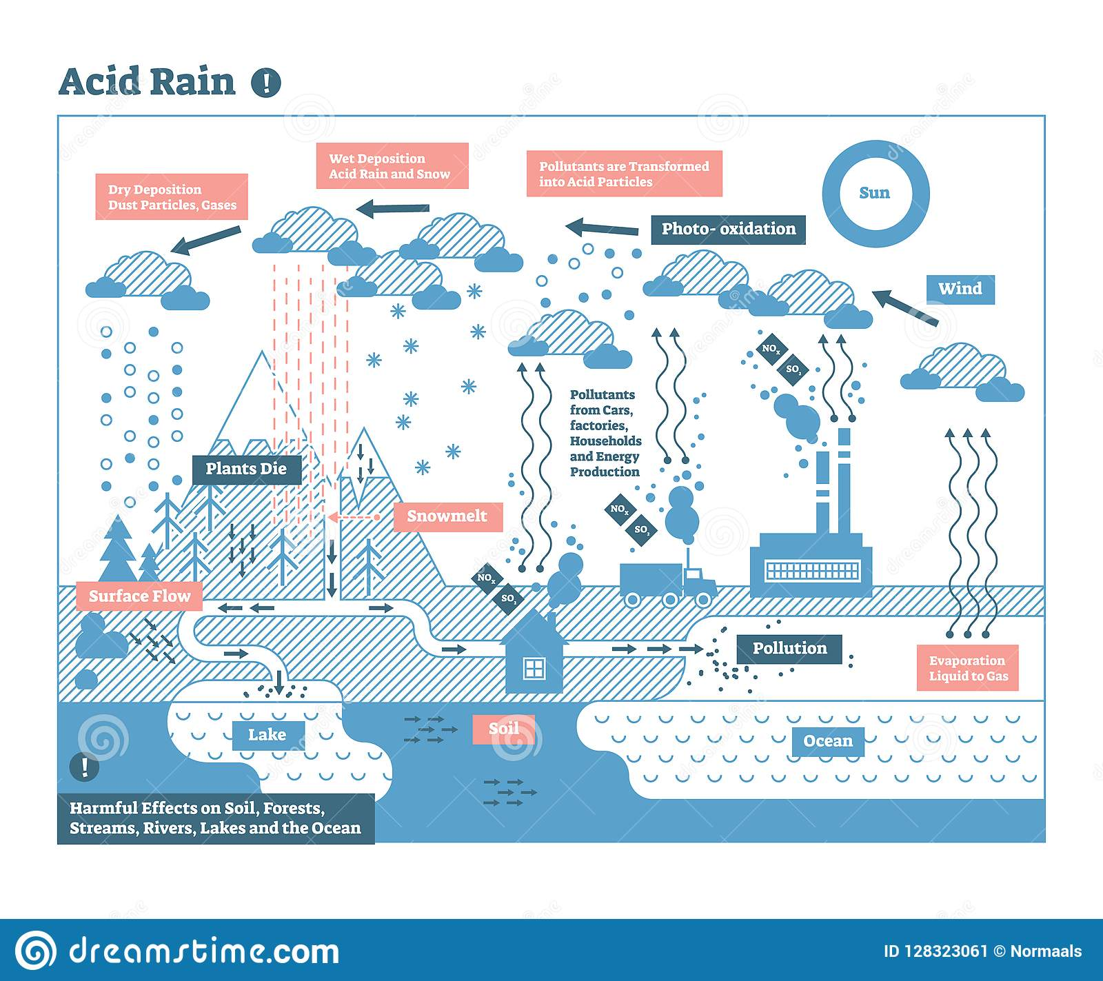 Acid Rain Cycle Nature Ecosystem Pollution Infographic