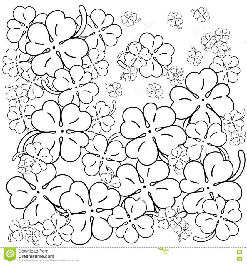 adult coloring book page. four leaf clovers. hand drawn