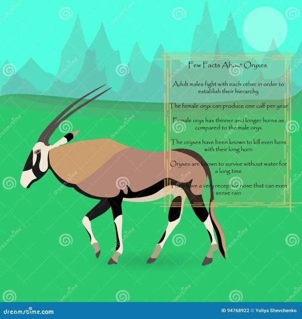 Cartoon African Oryx