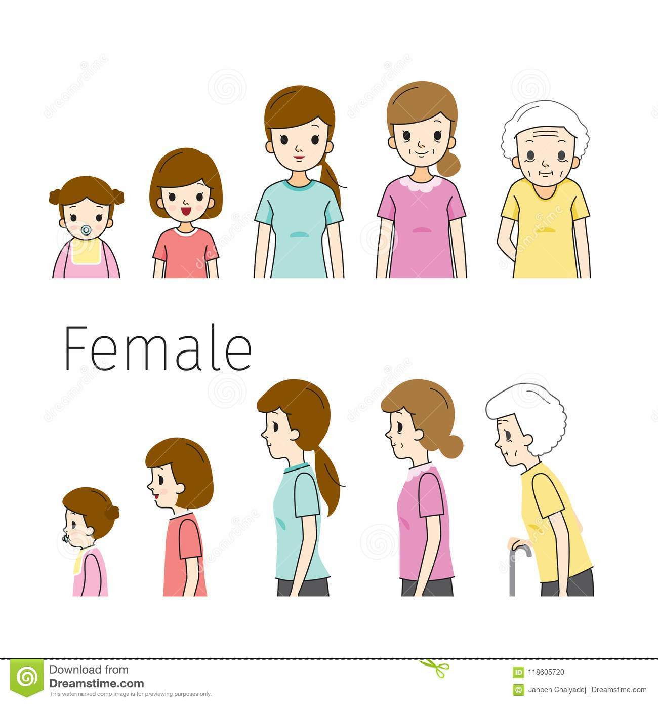 The Life Cycle Of Woman Generations And Stages Of Human