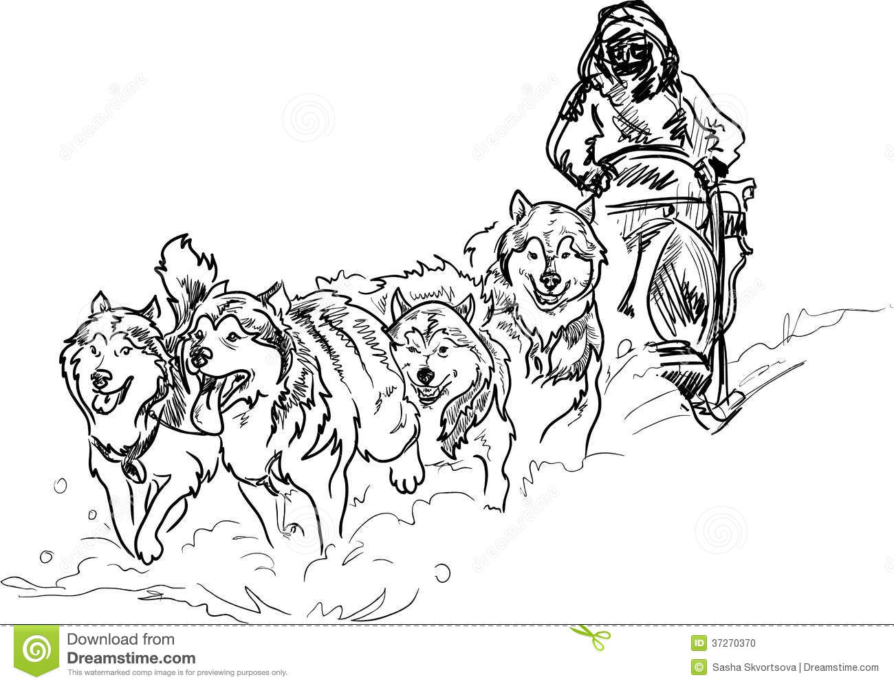 Alaskan sled dogs stock illustration. Image of