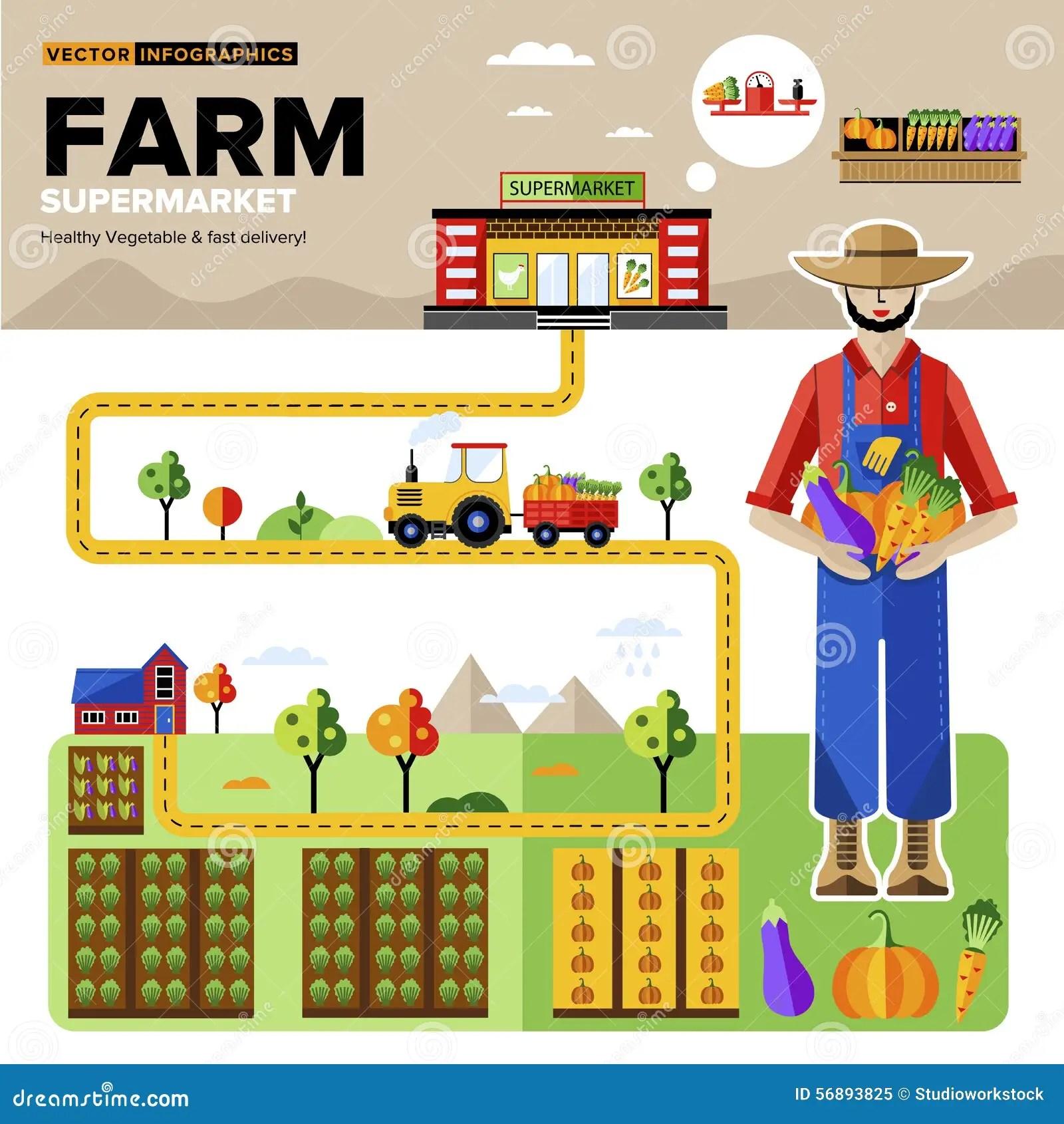 Alimenti Organici Naturali Al Supermercato Illustrazione