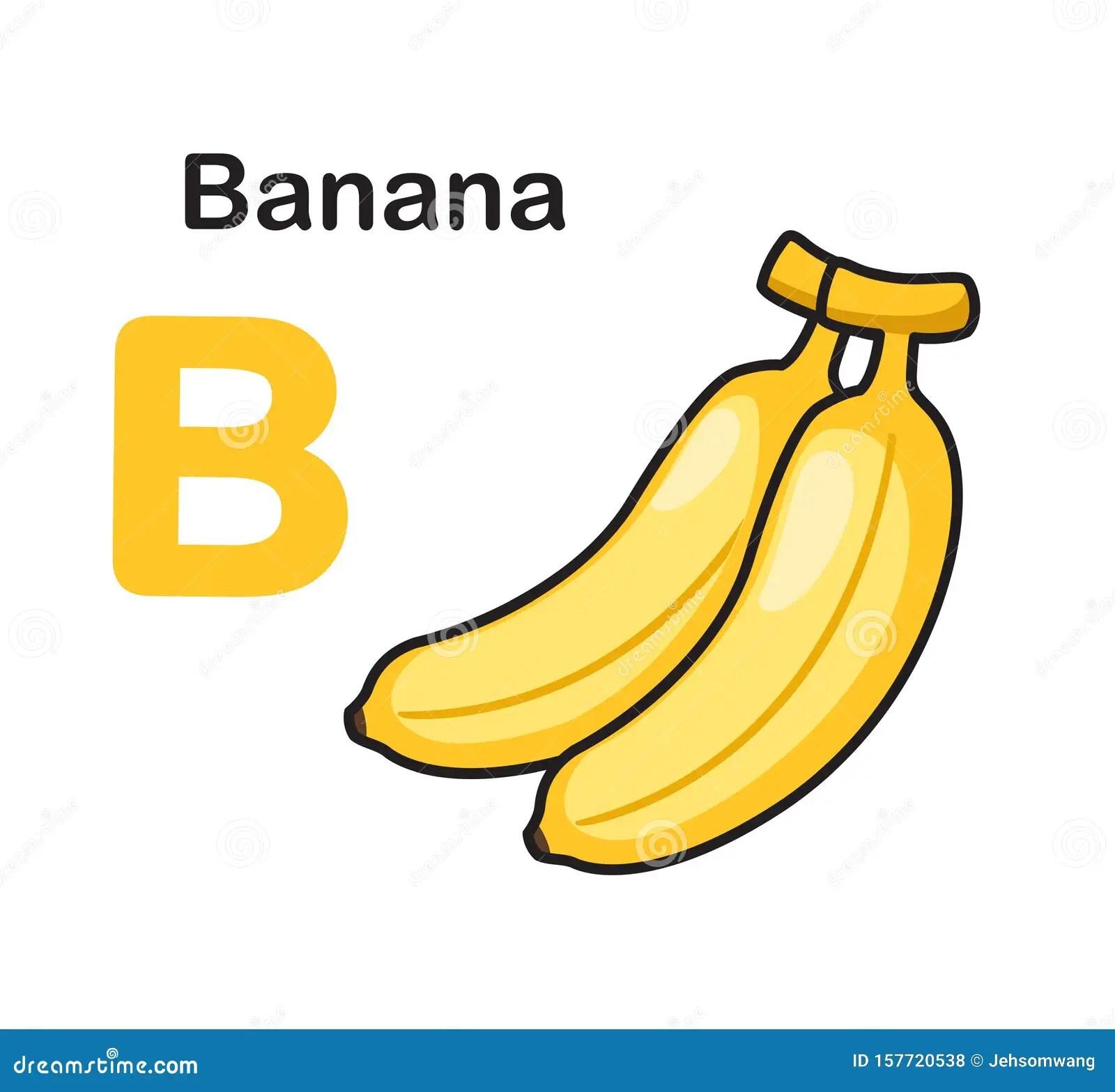 Alphabet Letter B Banana Stock Vector Illustration Of