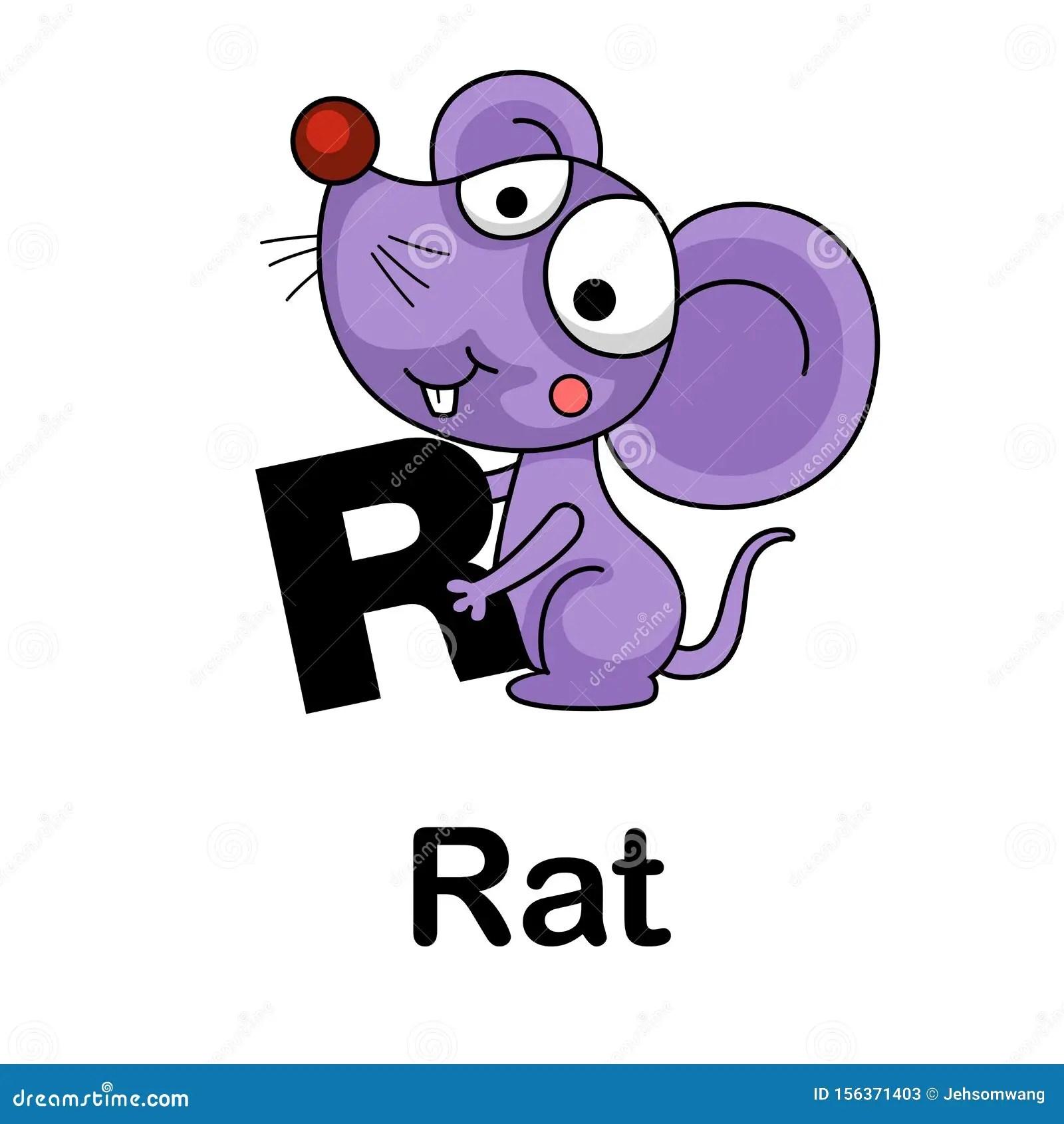 Letter R Rat Stock Illustrations 585 Letter R Rat Stock