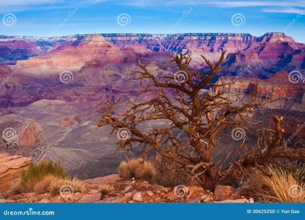 Amazing Landscape In Grand Canyon National Park Arizona Usa Stock - 30625250