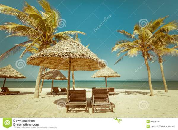 Amazing Tropical Beach With Palm Trees Chairs And