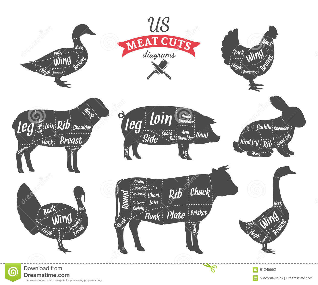 American Us Meat Cuts Diagrams Stock Vector