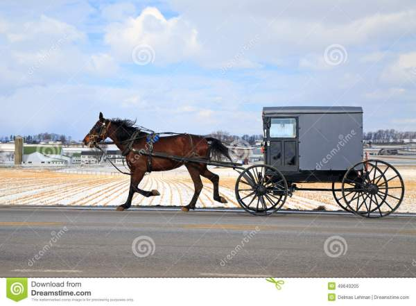 Amish Carriage In Winter Stock - 49640205