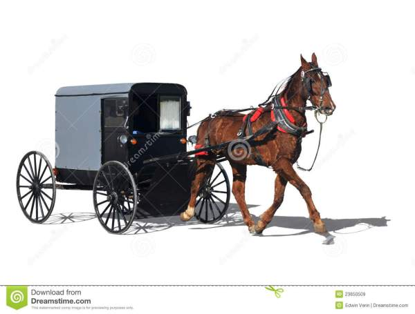 Amish Horse-drawn Carriage Royalty Free Stock