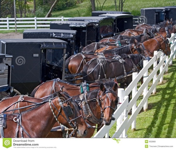 Amish Parking Lot Royalty Free Stock - 932868