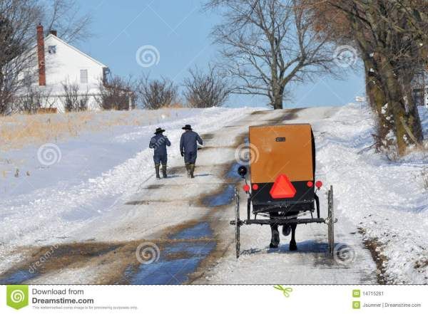 Amish Walk Stock - 14715261