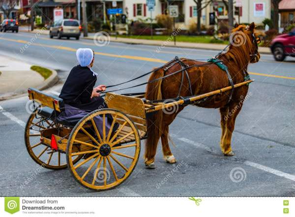 Woman And Fashioned Amish Horse Buggy Editorial