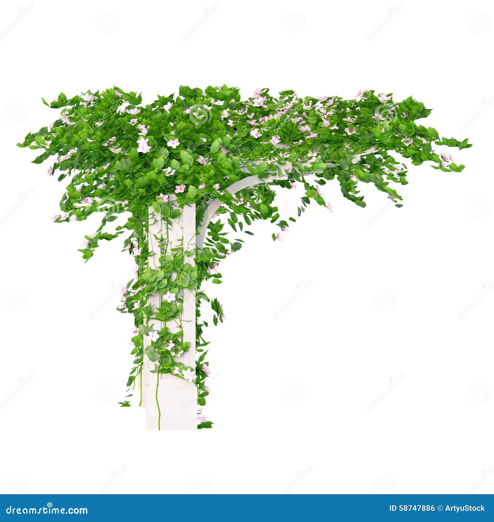 Angled Pergola Of Wood Stock Illustration Image 58747886