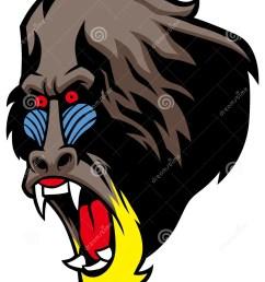 angry baboon head [ 1047 x 1300 Pixel ]