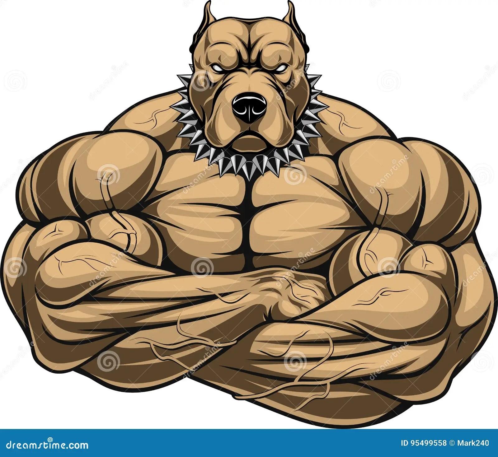 Bulldog Drawing Muscle
