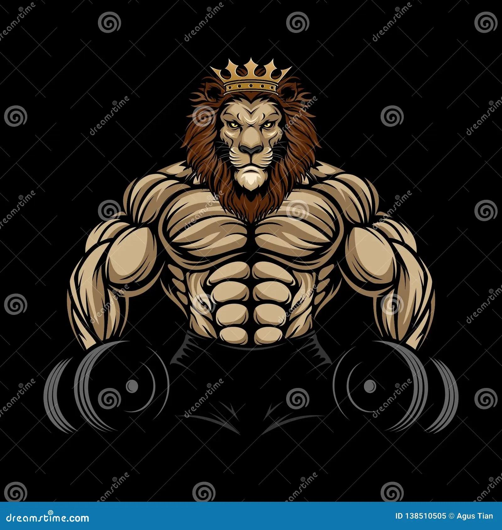 angry lion gym stock