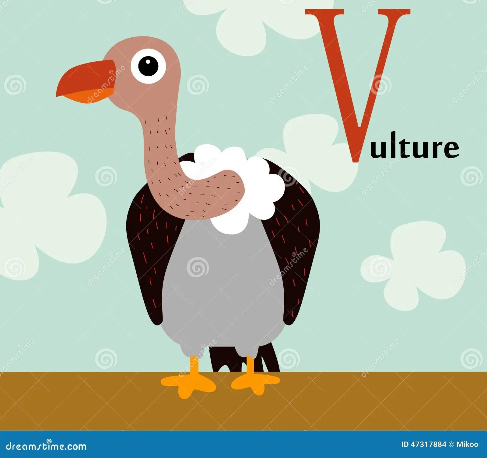 Animal Alphabet For The Kids V For The Vulture Stock