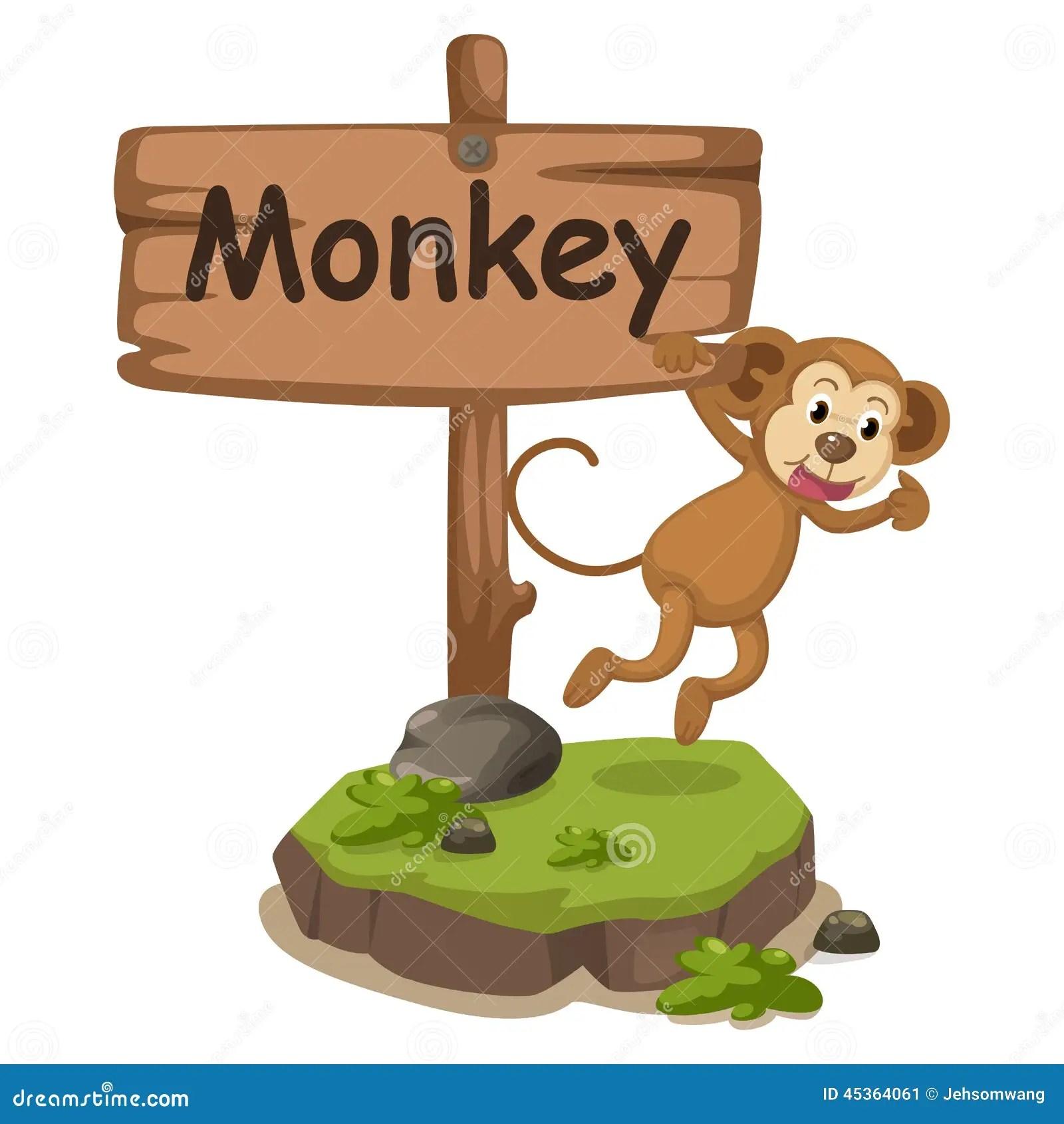 Animal Alphabet Letter M For Monkey Stock Vector