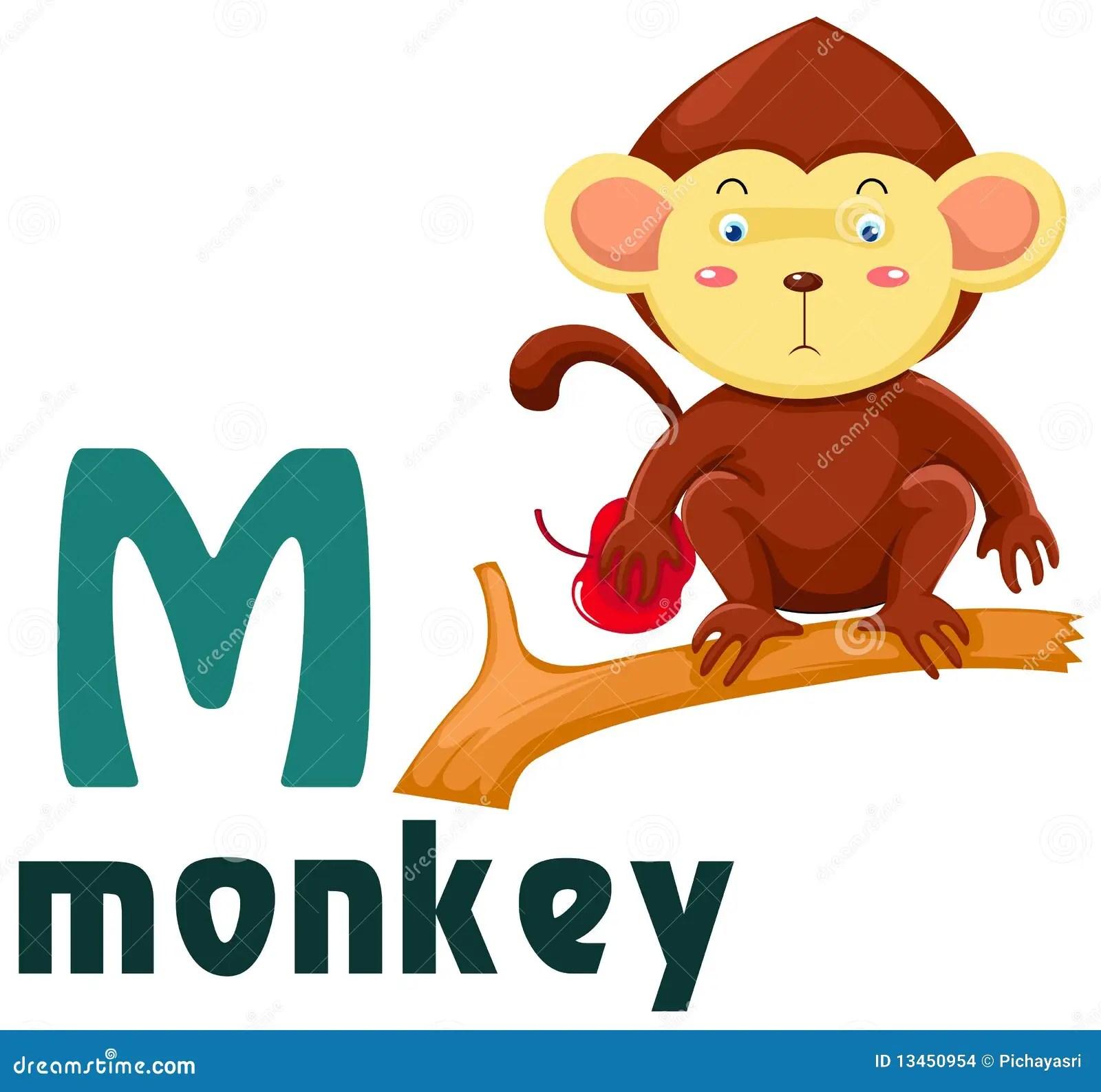 Animal Alphabet M Stock Images - Image: 13450954