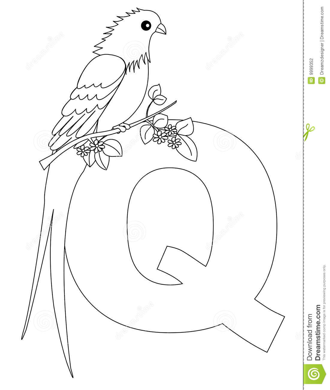 Animal Alphabet Q Coloring Page Stock Photography