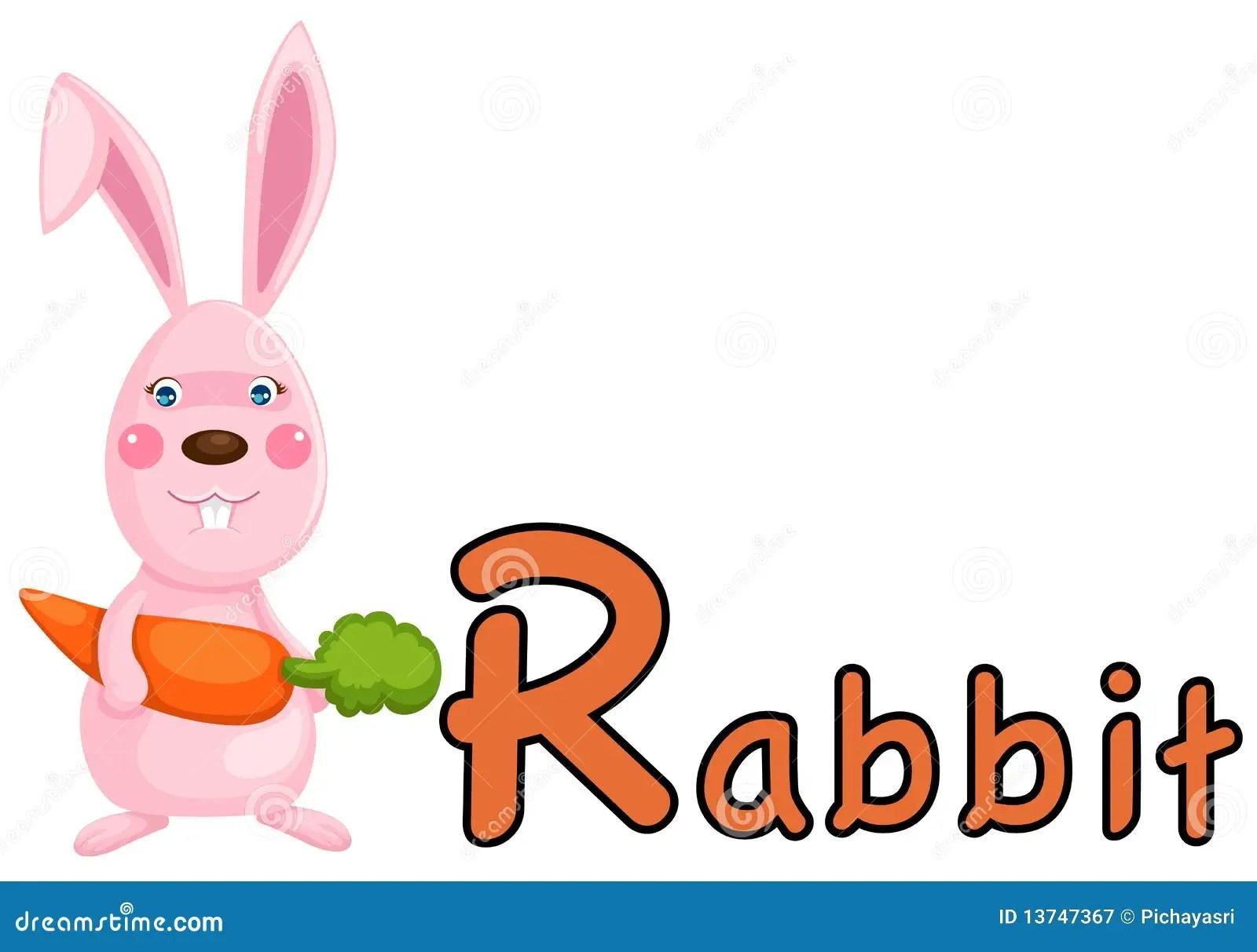 Animal Alphabet R For Rabbit Royalty Free Stock