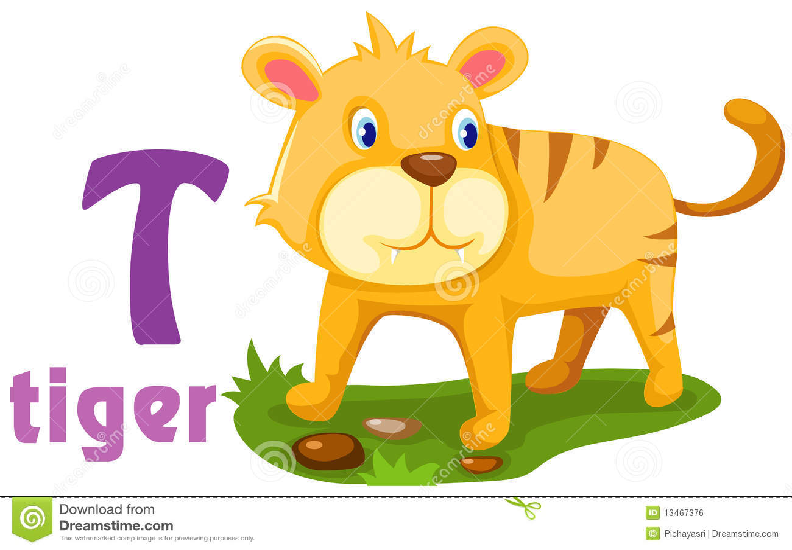Animal Alphabet T Stock Vector Illustration Of Education