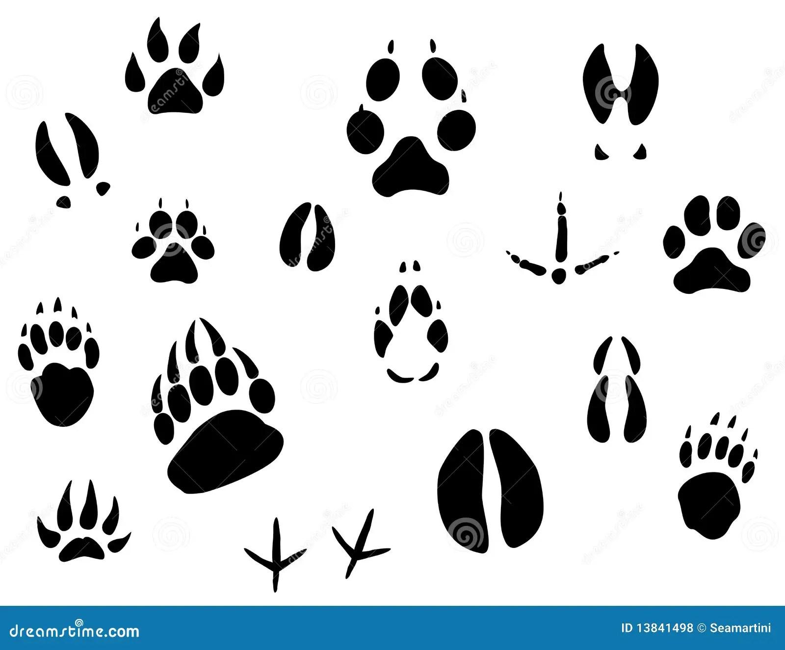 Animal footprints stock vector. Illustration of icon