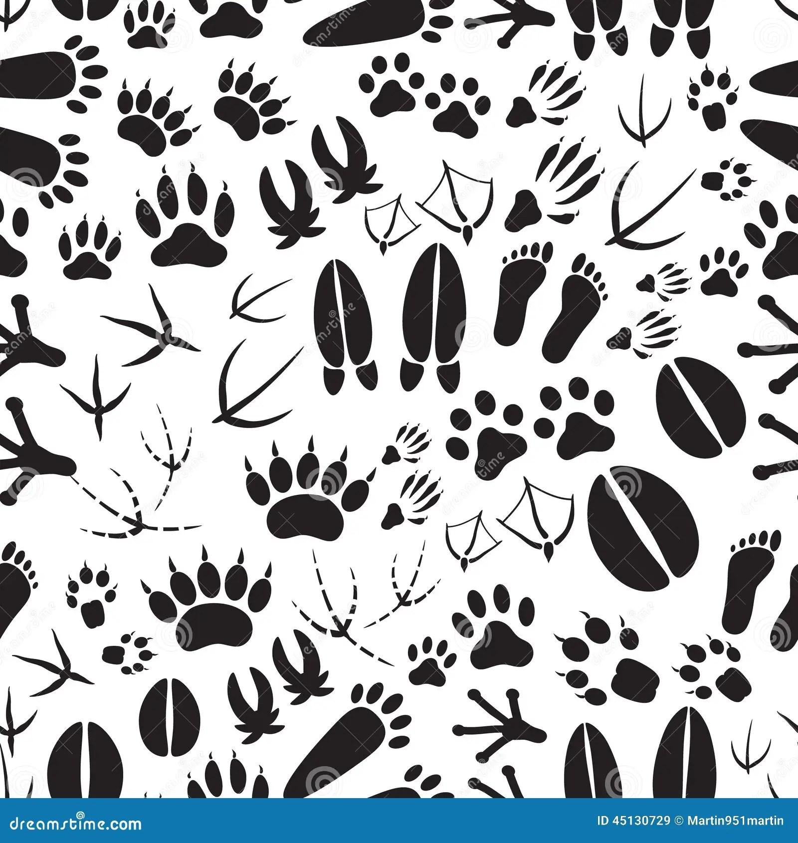 Animal Footprints Black And White Seamless Pattern Stock
