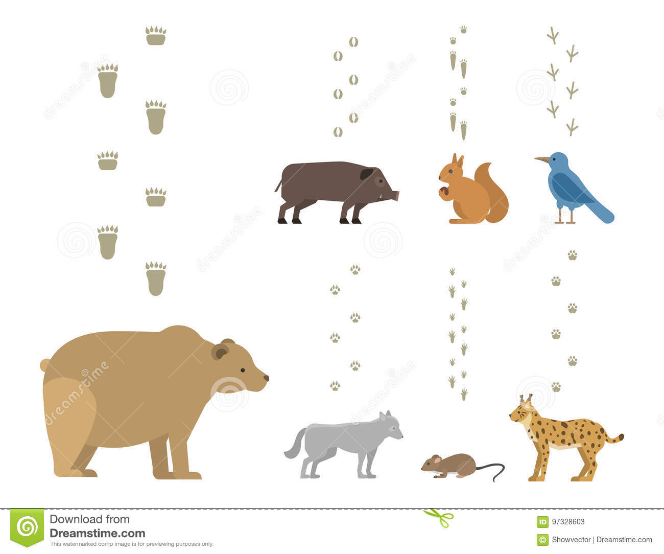 Animal Footprints Include Mammals And Birds Foot Print