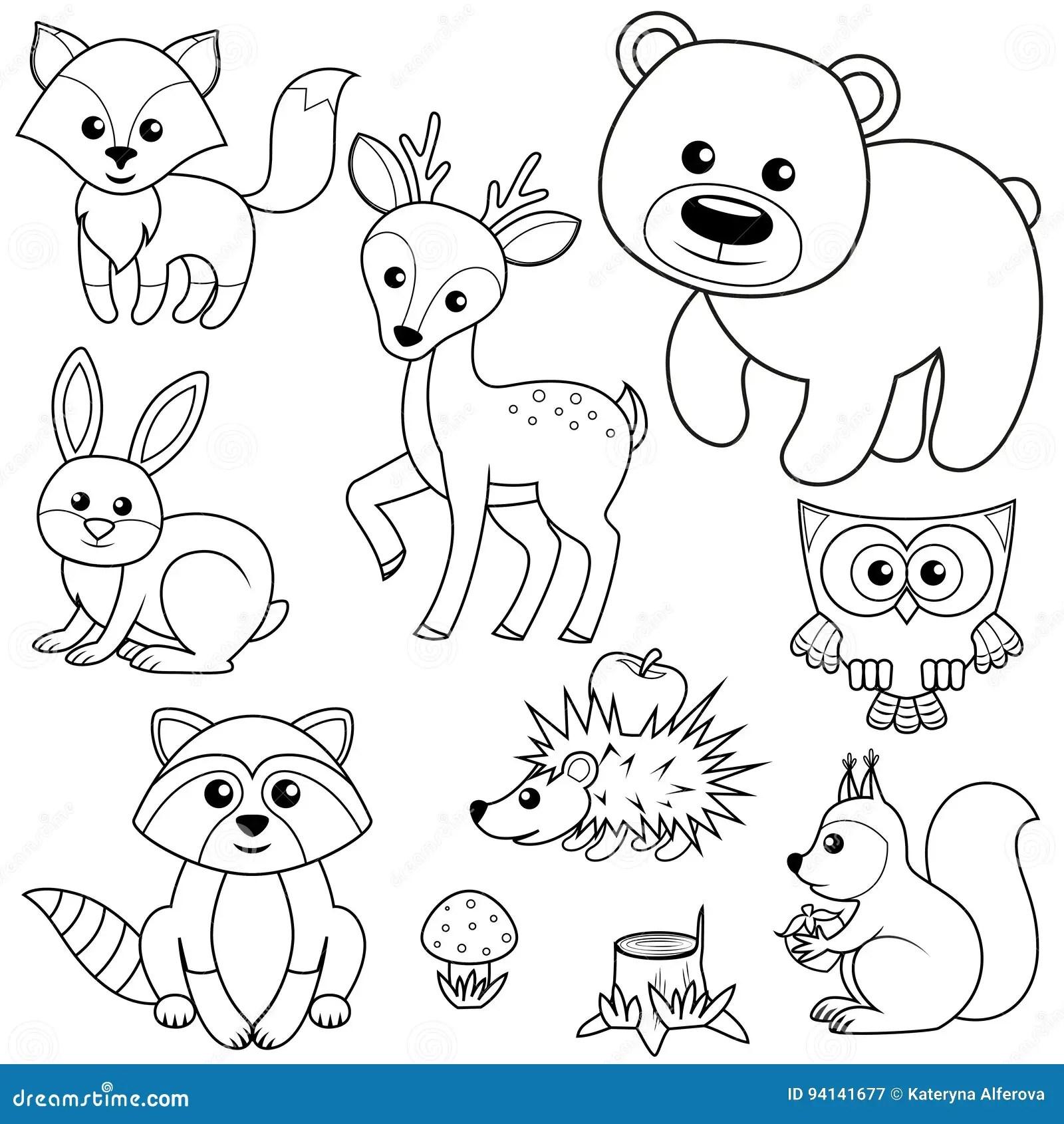 Animali Della Foresta Ceppo Di Fox Dell Orso Del Raccon