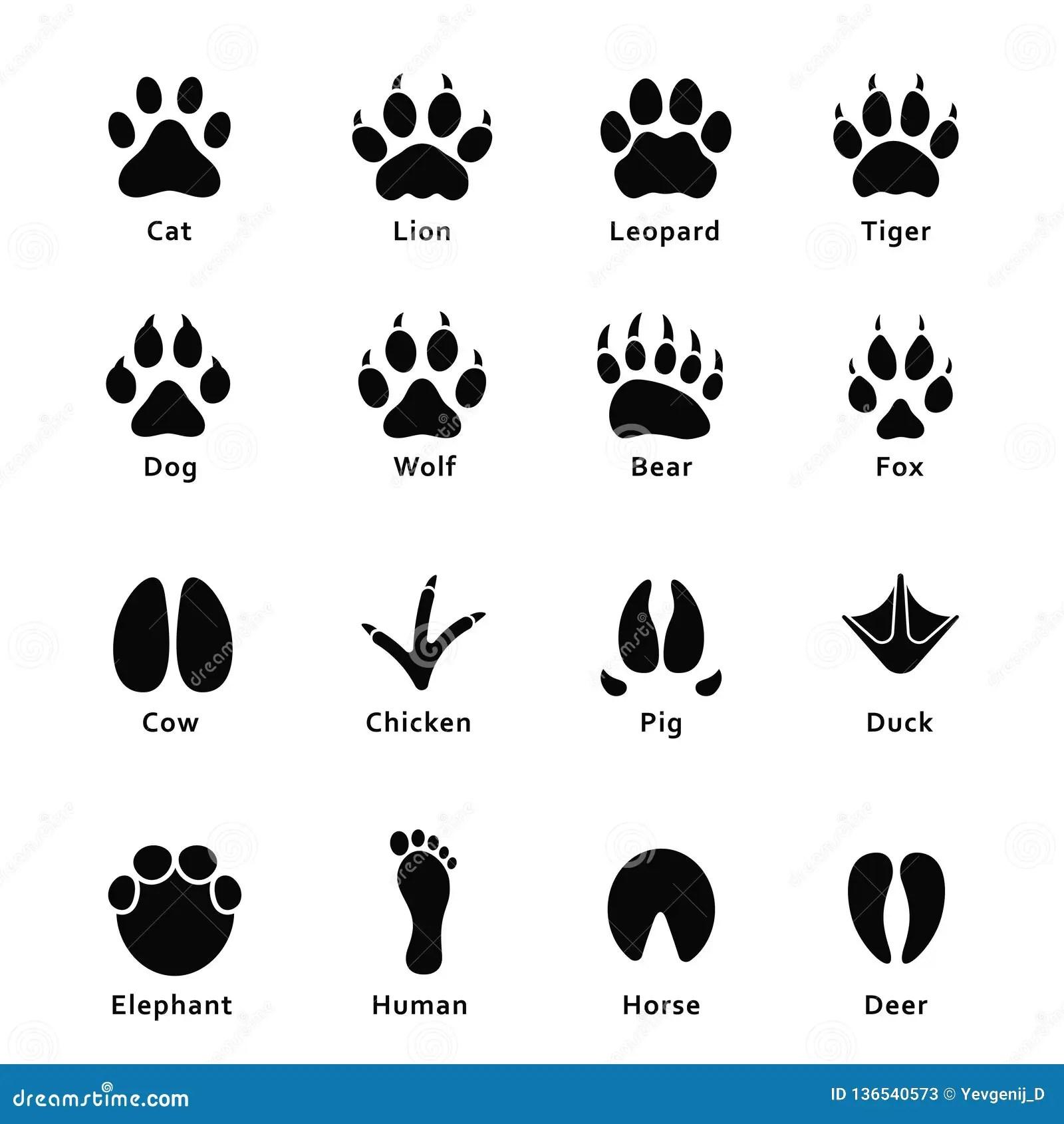 Animals Footprints Paw Prints Set Of Different Animals