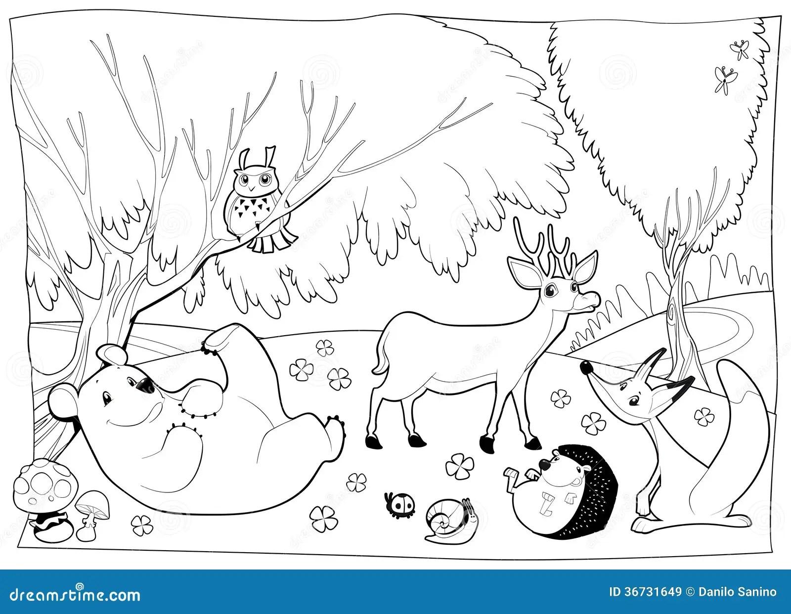 Hibernation Habitat Worksheet