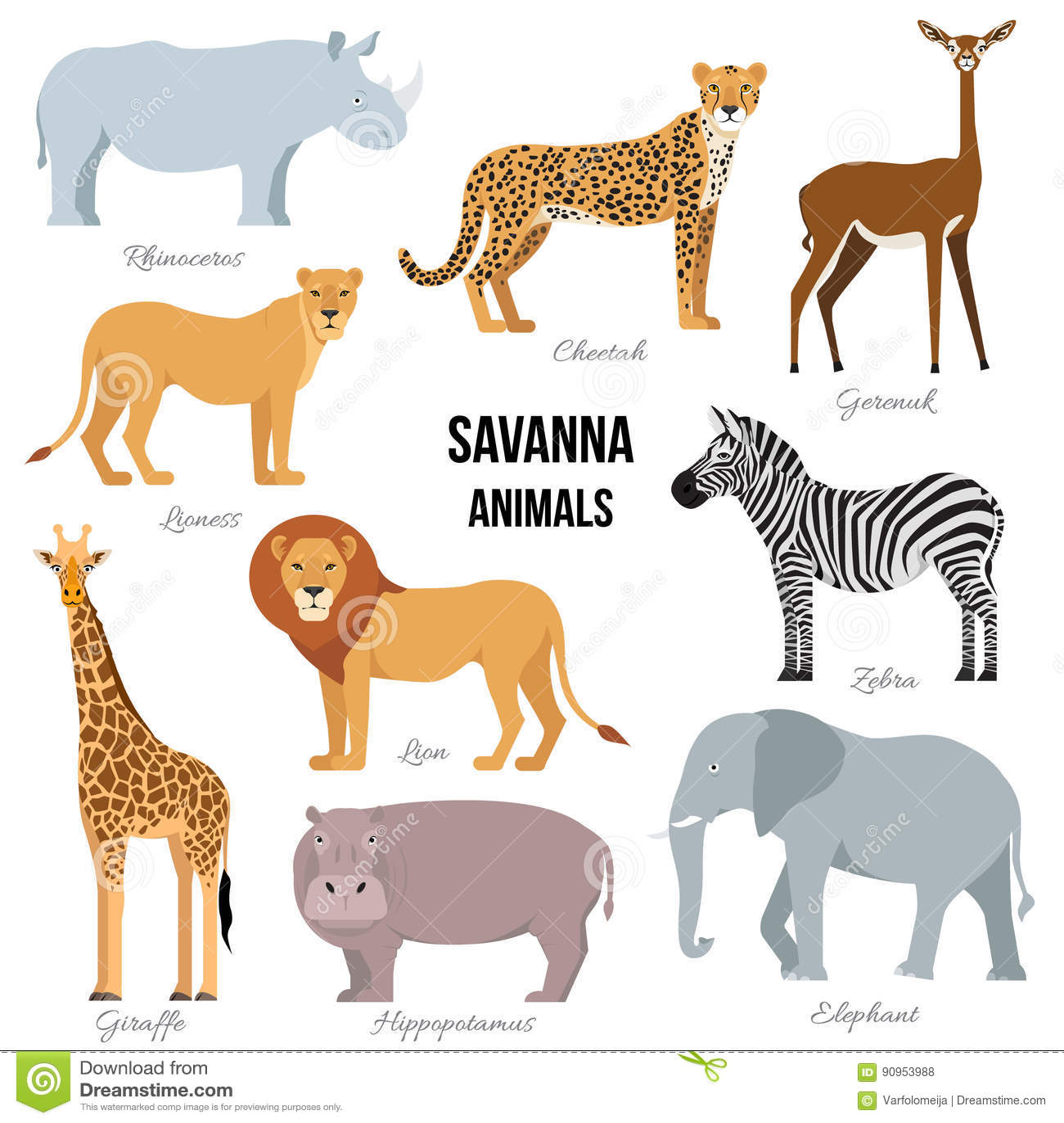 Animaux Africains D Elephant De La Savane Rhinoceros