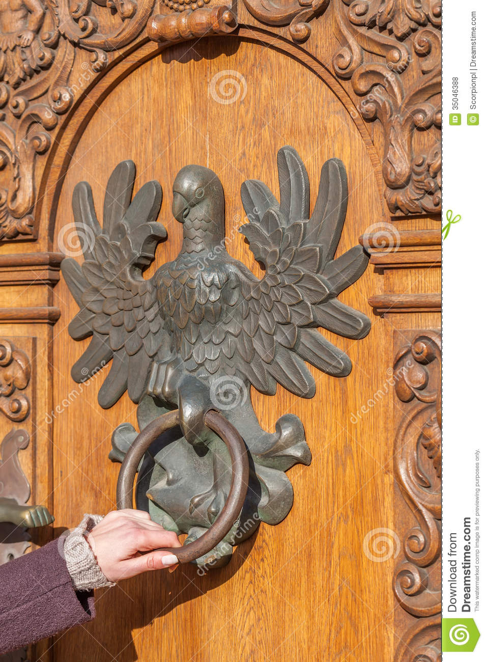 Antique Door With Knocker In The Shape Of An Eagle Stock