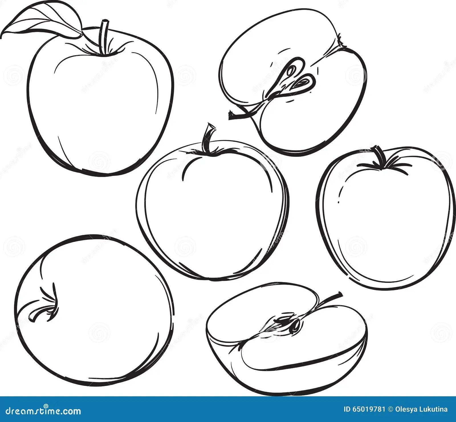 Apple Dessin Au Trait Des Pommes Sur Un Fond Blanc Une