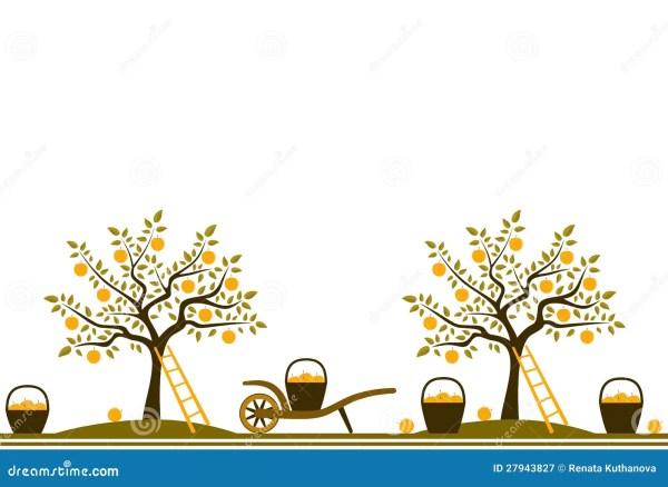 apple harvest border royalty free