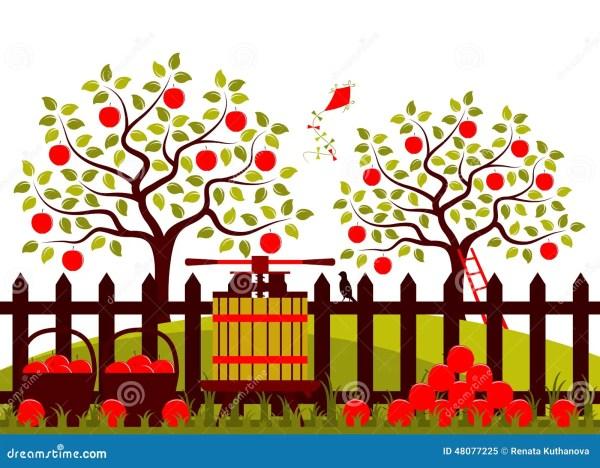 apple harvest stock illustration