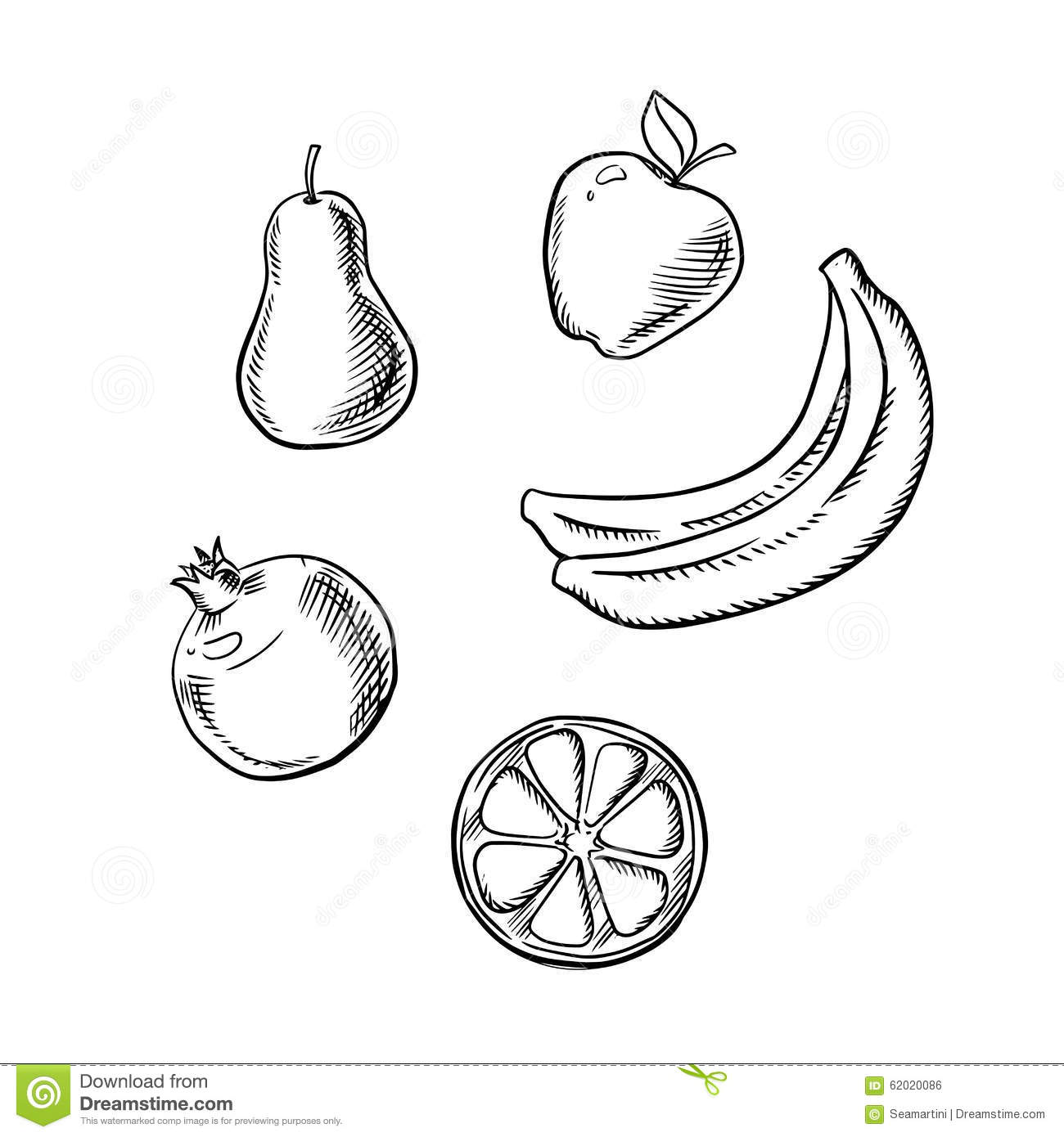 Apple Pear Lemon Banana And Pomegranate Stock Vector