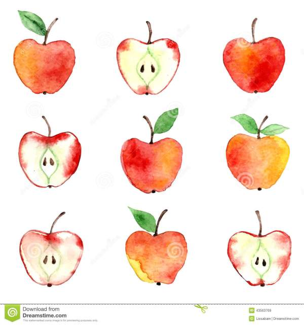 apple watercolor pattern stock