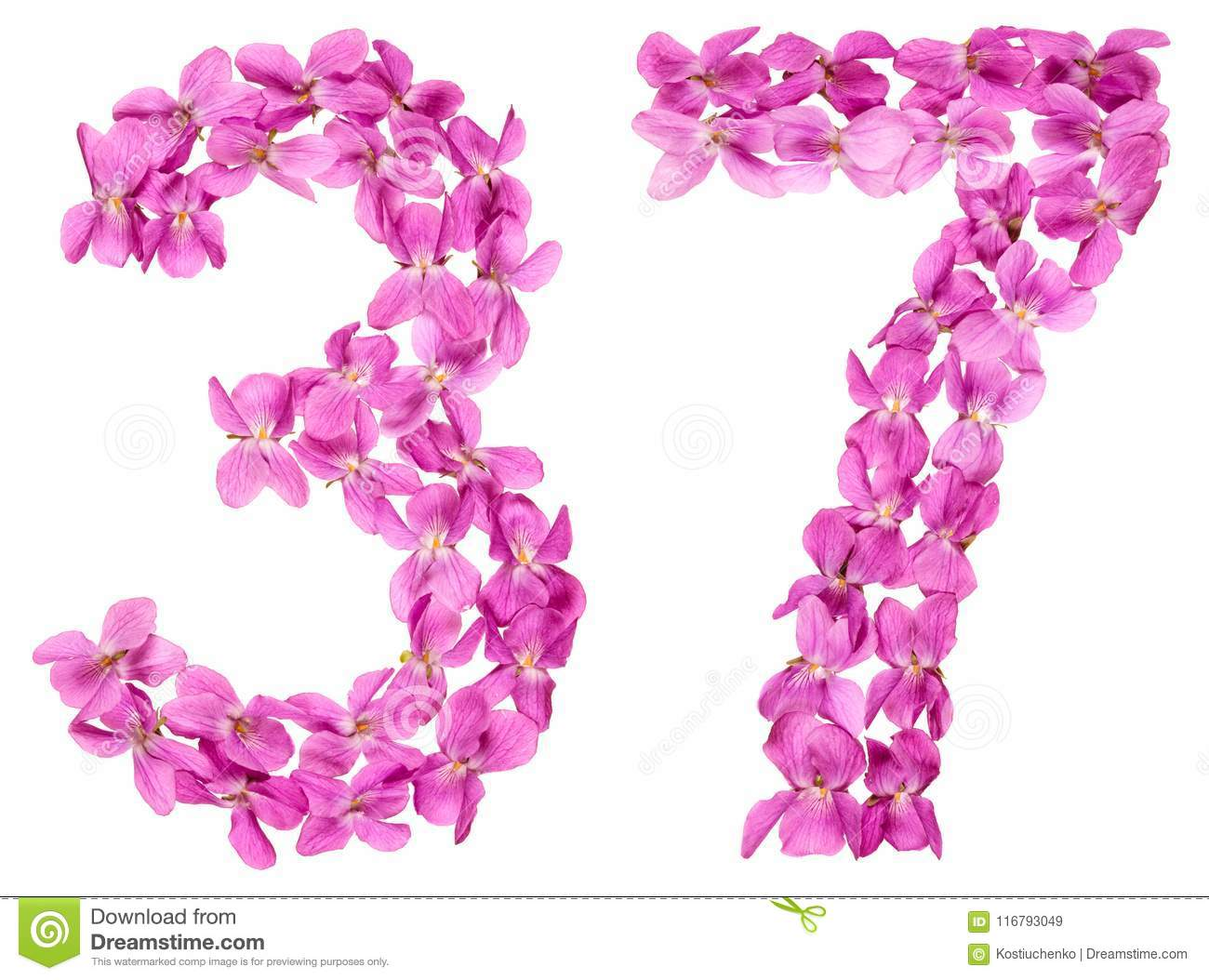Arabic Numeral 37 Thirty Seven From Flowers Of Viola