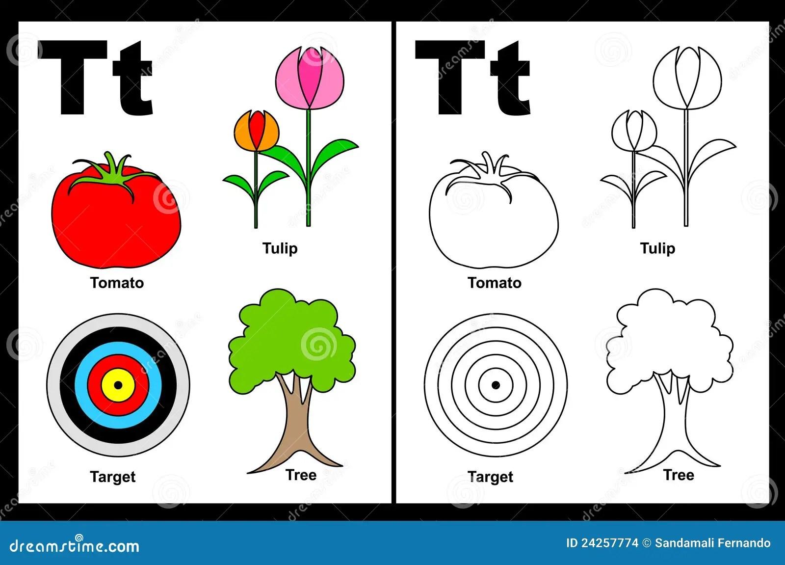 Arbeitsblatt Des Zeichens T Vektor Abbildung