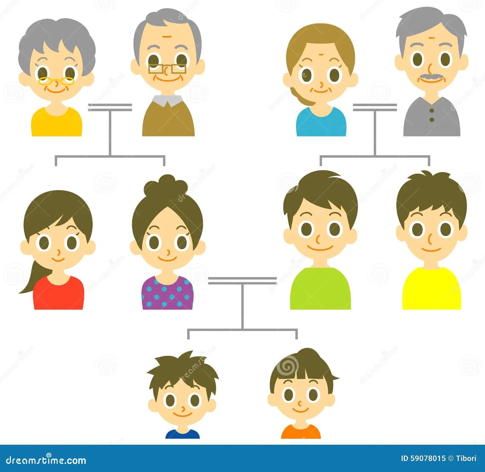 Arbre Genealogique Illustration De Vecteur
