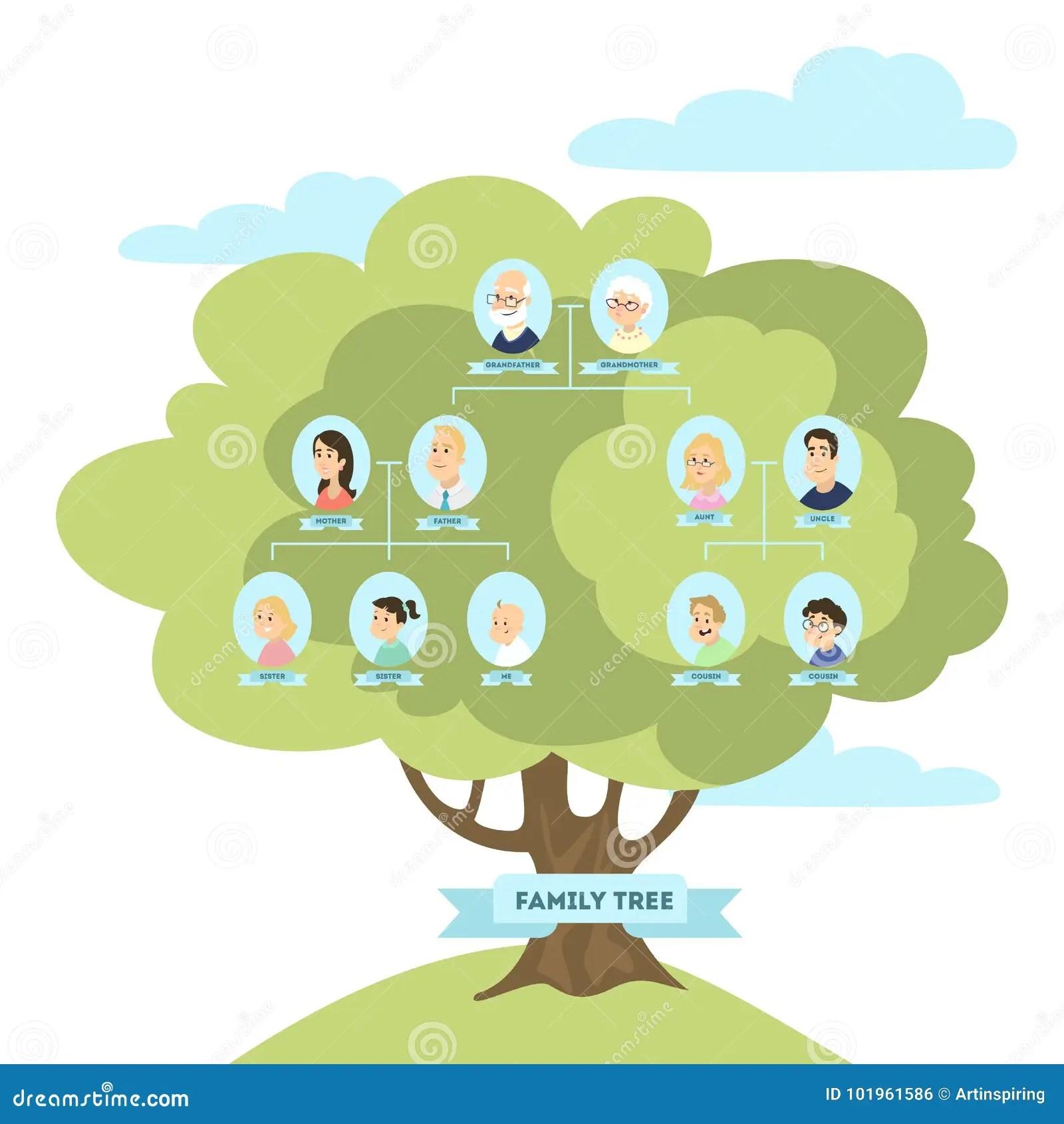 Arbre Genealogique De Famille Illustration De Vecteur