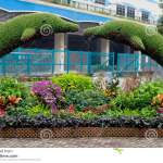 The Art Of Cutting Plants Stock Photo Image Of Topiary 77287676