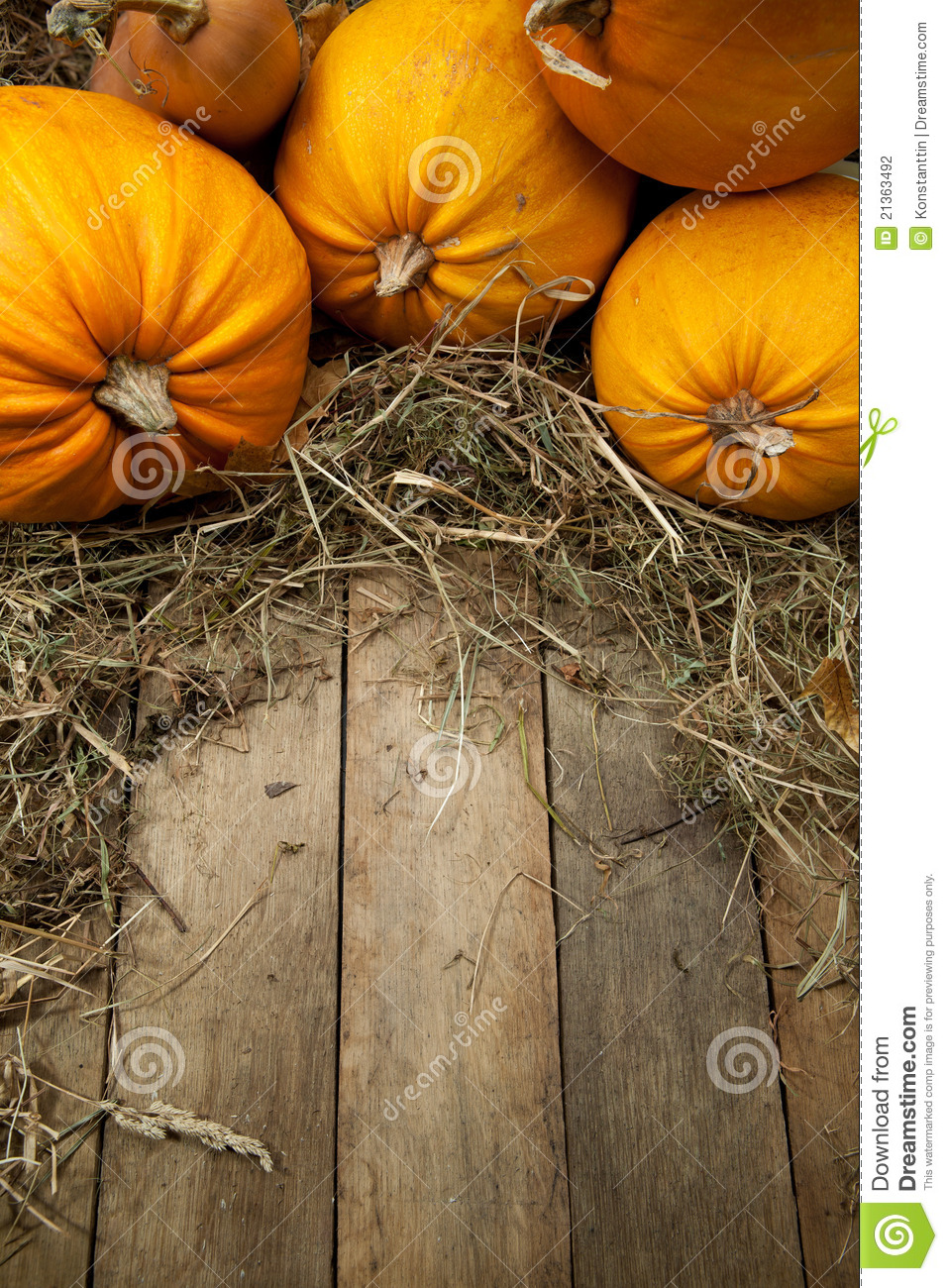 Free Fall Pumpkin Wallpaper Art Orange Pumpkins On Wooden Background Stock Photography