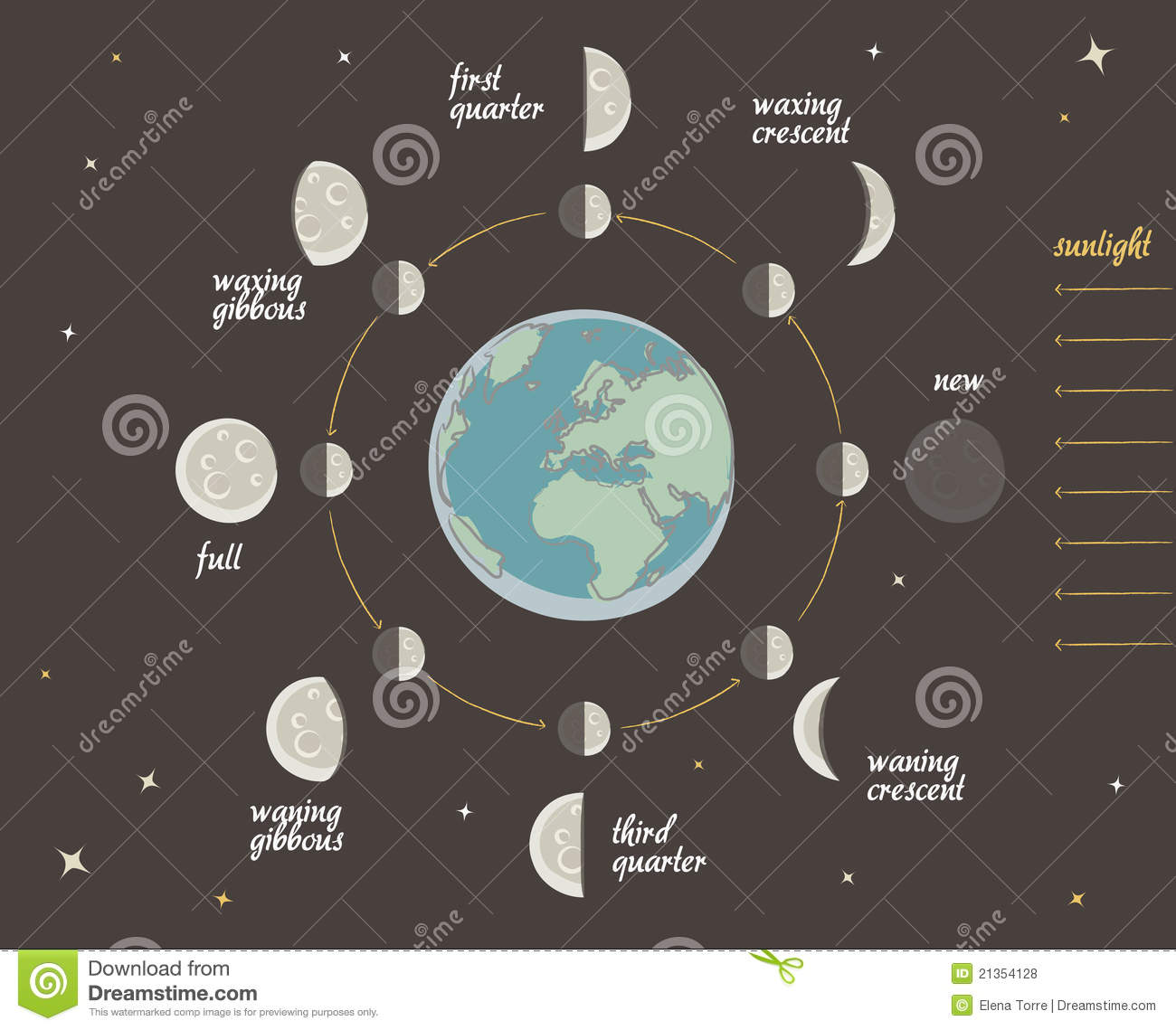 Astronomy Lesson Moon Phases Vector Stock Vector