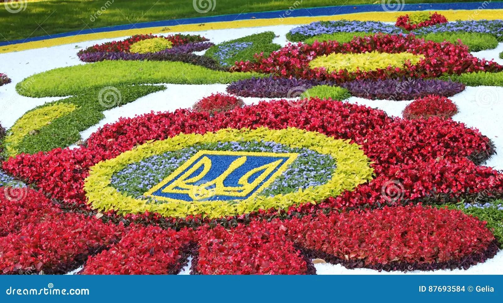 Blumen Im August Rosa Blumen Im August With Blumen Im