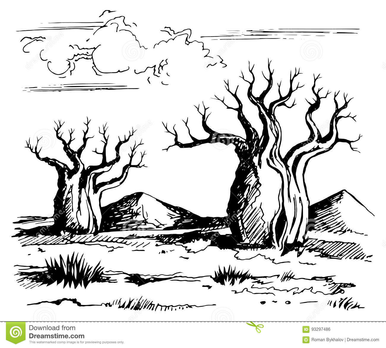 Australia Landscape With Baobab Trees Stock Vector